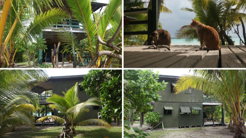 Our house exterior on One Foot Island, Aitutaki