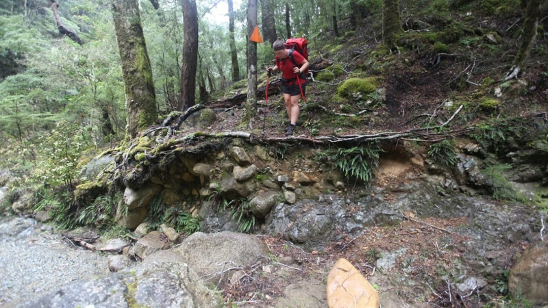 Speeding Ahead - from Mid to Top Wairoa Hut