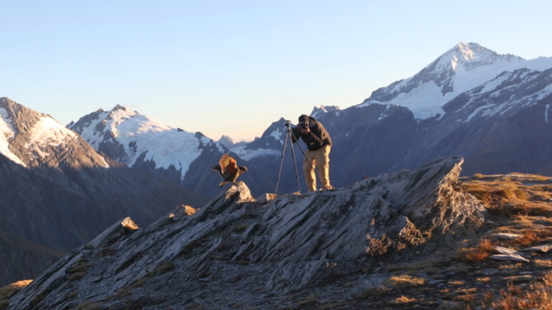 Nico photographing an inquisitive Kea with Mt Aspiring in the background