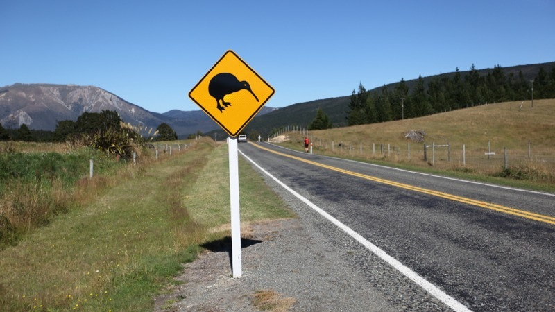 Kiwi sign on State Highway 63